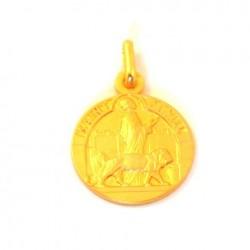 Médaille Saint Daniel - plaqué or