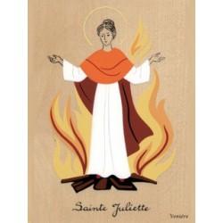Cadre Sainte Juliette - Venière