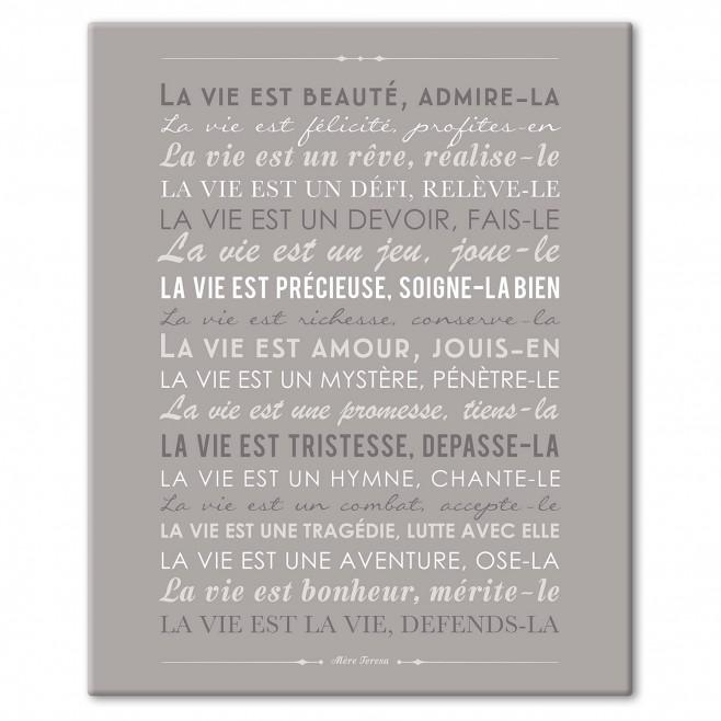 """Cadre Déco """"La vie est beauté"""" - gris"""